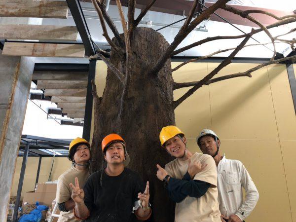 巨木 施工_181029_0051